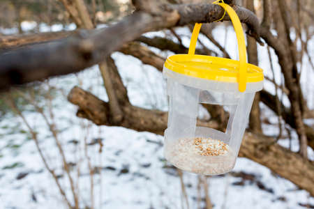 bird feeder: A bird feeder in the park full with grains.