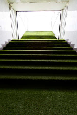 staircases: Green staircases at a stadium for the players.