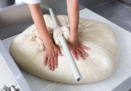 vacas lecheras: Una mujer que trabaja en una peque�a lecher�a familiar est� procesando los pasos finales de hacer un lote de queso. La granja de productos l�cteos est� especializada en yogur b�falo y la producci�n de queso.