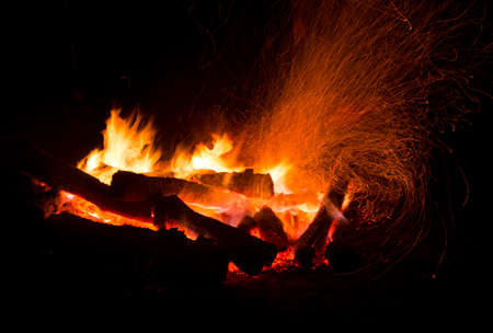 no movement: Campfire in the forest during night at the summertime.