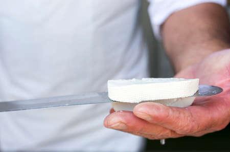 pecora: Feta � un formaggio bianco in salamoia cagliata fatta in Grecia con latte di pecora, o da una miscela di latte ovino e caprino. Simili formaggi bianchi in salamoia prodotti al di fuori dell'Unione europea, sono spesso realizzati in parte o interamente di latte di mucca.