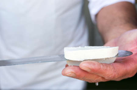 queso de cabra: Feta es un queso blanco en salmuera cuajada hecha en Grecia con leche de oveja o de una mezcla de leche de oveja y de cabra. Quesos blancos en salmuera similares producidos fuera de la Uni�n Europea se hacen a menudo en parte o en su totalidad de la leche de vaca.
