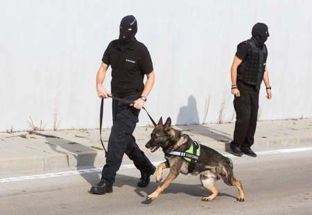 Customs officers and their dog are participating in a training for drugs detection in Sofias airport. The dogs are trained to find drugs smuggled in the luggage.