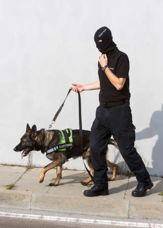 airport customs: Customs officer and his dog are participating in a training for drugs detection in Sofias airport. The dogs are trained to find drugs smuggled in the luggage.