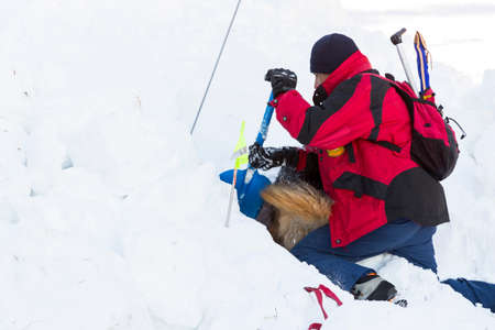Sofia, Bulgaria - January 28, 2016: Rescuer from the Mountain Rescue Service at Bulgarian Red Cross and his dog are participating in a training for saving people in an avalanche.