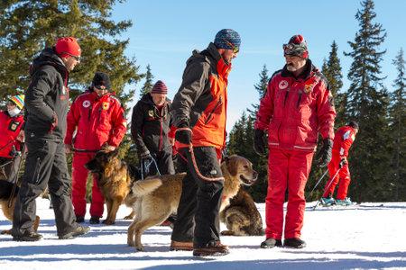 red cross: Sof�a, Bulgaria - 28 de enero 2016: Los equipos de rescate del Servicio de Rescate de la monta�a en la Cruz Roja de Bulgaria est�n participando en un entrenamiento para salvar a la gente en una avalancha.
