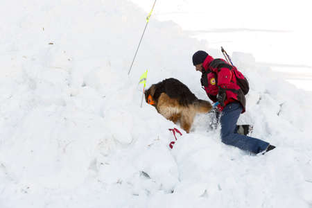 red cross: Sof�a, Bulgaria - 28 de enero 2016: rescatador del Servicio de Rescate de la monta�a en la Cruz Roja b�lgara y su perro est�n participando en un entrenamiento para salvar a la gente en una avalancha.