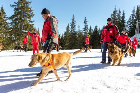 cruz roja: Sof�a, Bulgaria - 28 de enero 2016: Los equipos de rescate del Servicio de Rescate de la monta�a en la Cruz Roja de Bulgaria est�n participando en un entrenamiento para salvar a la gente en una avalancha.