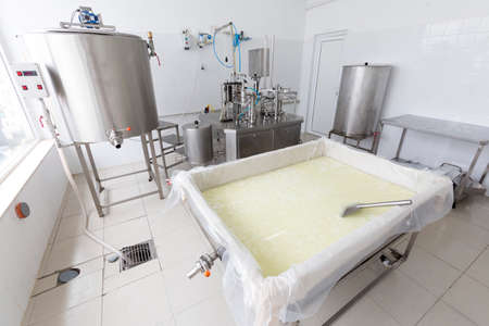 creamery: A dairy tank with buffalo cheese in a small family creamery is preparing a cheese batch. The dairy farm is specialized in buffalo yoghurt and cheese production.