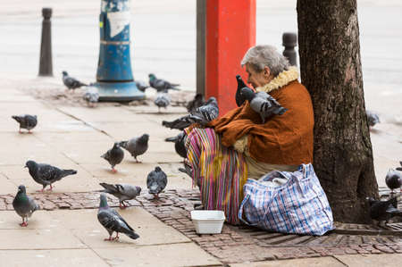 animal woman: Sofia, Bulgaria - February 27, 2016: A homeless beggar woman is covered by pigeons while begging at a street in Sofia. Bulgaria is still the poorest EU country.