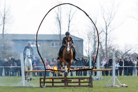 policewomen: Sofia, Bulgaria - March 19, 2016: A policewoman from Horse police unit in jumping with his horse above a fire barrier while participating in a parade at Saint Theodores day. Editorial