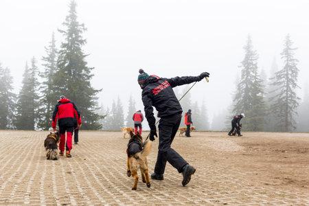 cruz roja: Sof�a, Bulgaria - 20 de abril 2016: Los hombres y sus perros en el equipo de b�squeda y rescate en la Cruz Roja de Bulgaria est�n participando en un entrenamiento en la monta�a de niebla.