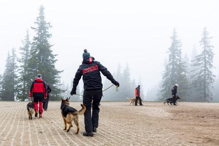 cruz roja: Sofía, Bulgaria - 20 de abril 2016: Los hombres y sus perros en el equipo de búsqueda y rescate en la Cruz Roja de Bulgaria están participando en un entrenamiento en la montaña de niebla.
