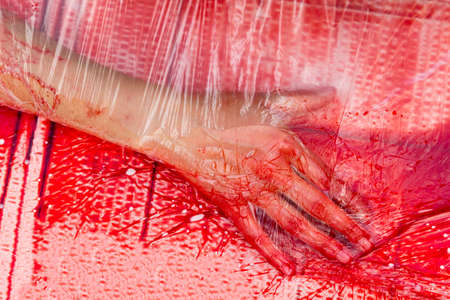 protesting: Vegans and vegetarians animal rights activists covered themselves in blood and wrapped themselves in meat packaging protesting against killing animals for meat or clothing.
