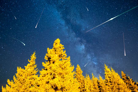 meteors: A view of the stars of the Milky Way with a pine trees forest in the foreground. Night sky nature summer landscape. Meteor Shower. Falling stars. Comets. Perseid Meteor Shower in 2016. Stock Photo