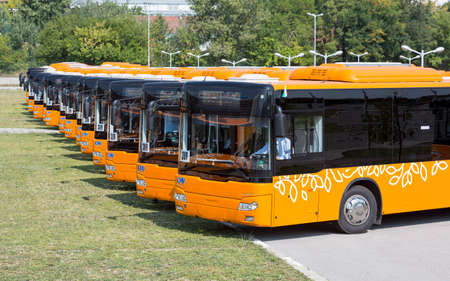 New modern busses for public transportation are shown in a row from the front in a parking lot. Stock Photo
