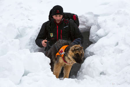 Sofia, Bulgaria - January 18, 2017: Rescuer from Mountain rescue service at Red Cross organization participates in a training with his dog. Both men and animals are trained before going on duty. Redakční