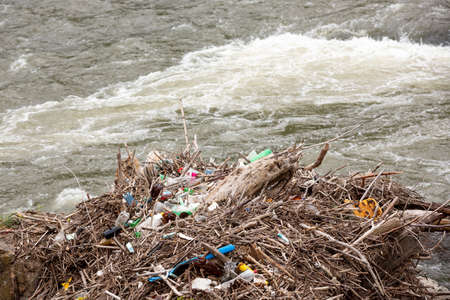 Trash on the river. Branches and plastic bottles.