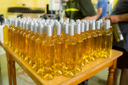 White wine bottles in a winery ordered for labeling before packed and shipped for sale.