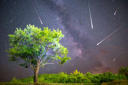 Una vista de una lluvia de meteoritos y la Vía Láctea. Ciruelo verde con ciruelas en lo alto de la montaña en primer plano. Paisaje de verano de naturaleza de cielo nocturno. Observación de la lluvia de meteoritos de las Perseidas. Foto de archivo