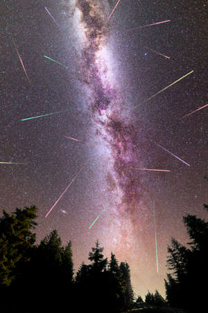 A view of a Meteor Shower and the purple Milky Way with pine trees forest silhouette in the foreground. Perseid Meteor Shower observation. Night sky nature summer landscape. Vertical. Colorful shooting stars.