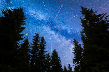 A view of the stars of the blue Milky Way with pine trees forest silhouette in the foreground. Night sky nature summer landscape. Perseid Meteor Shower observation. Colorful shooting stars. 免版税图像 - 147526618