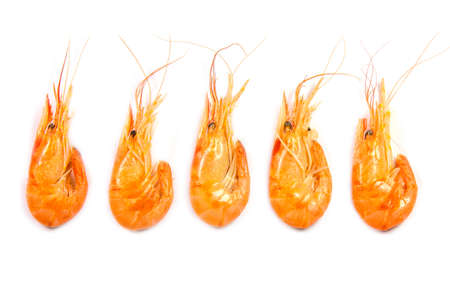 Five boiled shrimps in a raw isolated on white background, top view