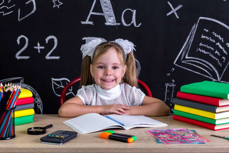Smiling and happy girl sitting at the desk with books, school supplies