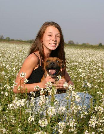jeune: jeune fille et son staffie Stock Photo