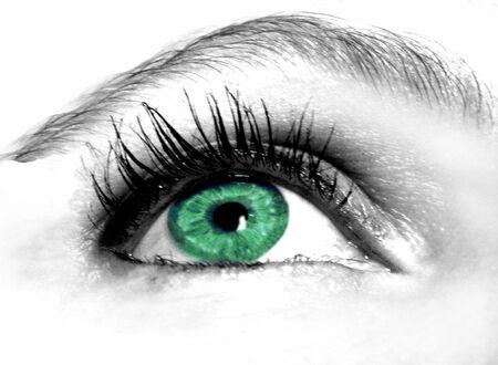 maquillage: green eye