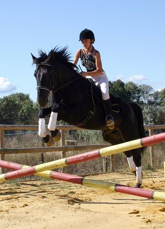 woman and horse: jumping horse Stock Photo