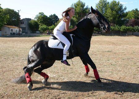 up paard