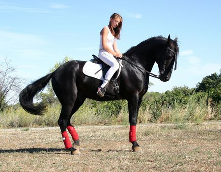 pony girl: riding woman and black stallion