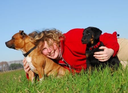 woman and puppies photo