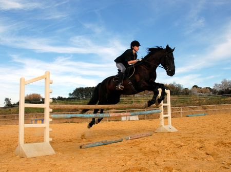 horse jumping: jump and horse Stock Photo