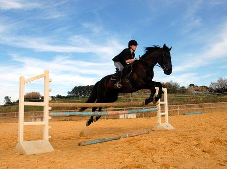 caballo saltando: salto y caballo Foto de archivo