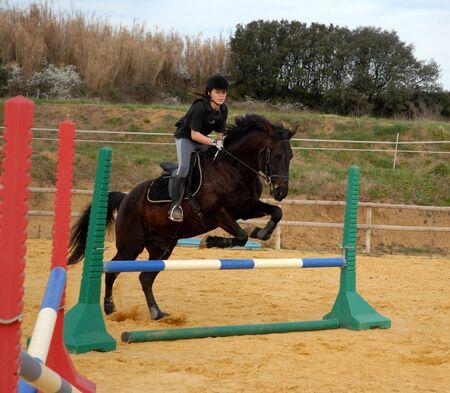 jumping black horse