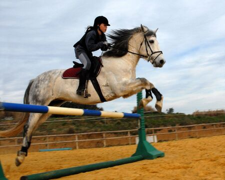 jumping grey horse Stock Photo