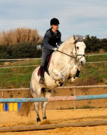 horse jumping: teen ang horse jumping Stock Photo