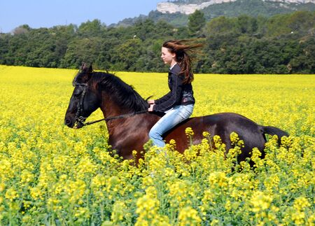 horses in field: galloping stallion and sexy girl