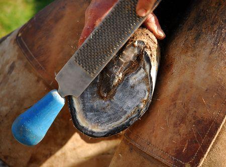 hoof and rasp Stock Photo
