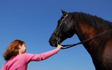 salto de valla: mi amigo el caballo  Foto de archivo