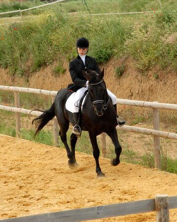 competition of dressage Stock Photo