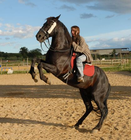 rearing horse and teenager