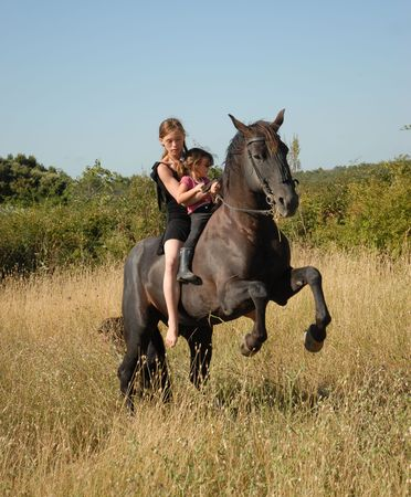 rearing black stallion in a field with teenager and little girlhorse, rearing, stallion, teen, teenager, child, children, girl, little, black, field, meadow, grass, danger, dangerous, sport, horseback riding, riding, animal, sister, mother,  photo