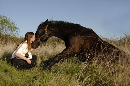 friendship between a stallion and a young teenager photo