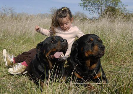perro asustado: sonriente ni�a y dos de raza peligrosa rottweiler
