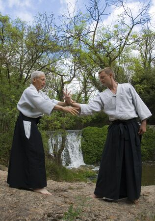 adherent: Two adults are training in Aikido in front of a waterfall