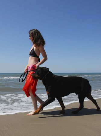 woman and big purebred rottweiler on the beach photo