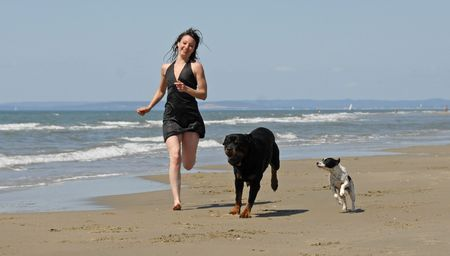 woman and her two dogs running on the beach Stock Photo